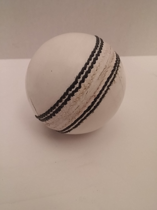 Picture of Practice Cricket Ball White