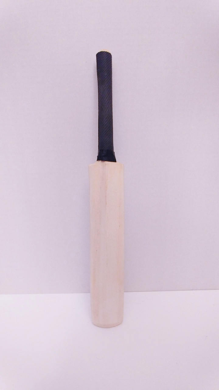 Picture of Mini Autograph bat Plain 18""