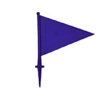 Picture of Boundary Flag Blue