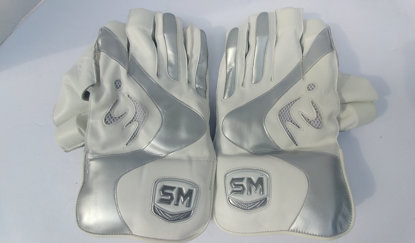 Image de SM Wicket Keeping Gloves COLLIDE