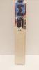 Picture of Cricket Bat SM EW CLUB FIGHTER LB-SH
