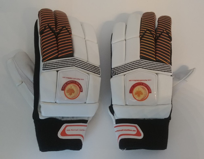 Picture of WKT Batting Gloves Superlite - RH Only