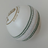 Picture of WKT Cricket Ball TEST